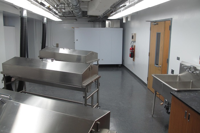 Physical Therapy anatomy lab