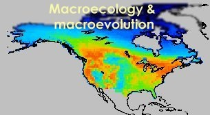 macroecology and macroevolution