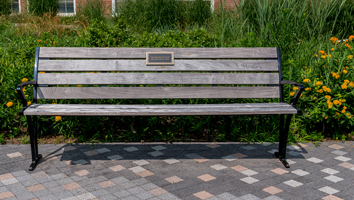 bench with a blue ribbon