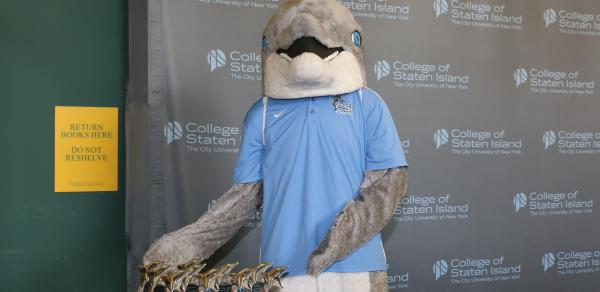 Our Mascot, The Dolphin