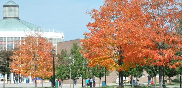 Campus Center in Fall