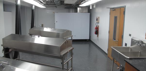 PT Anatomy Lab