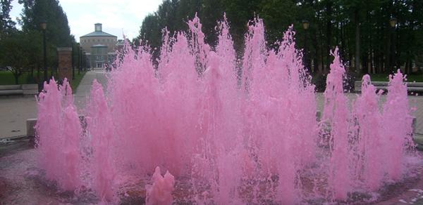 CSI Pink Colored Fountain