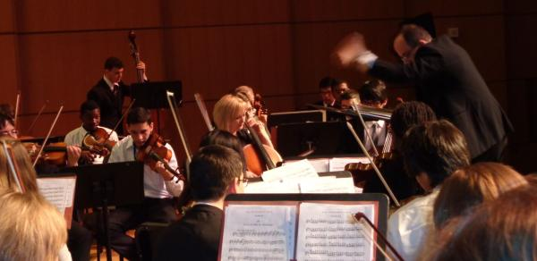 orchestra in music degree