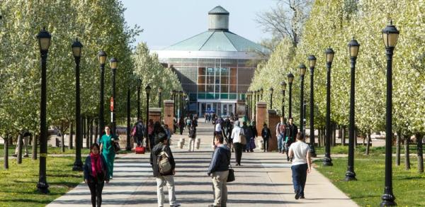 campus walk image
