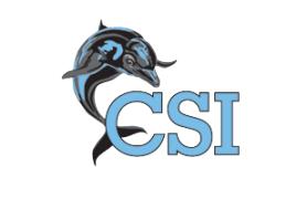 CSI Dolphin