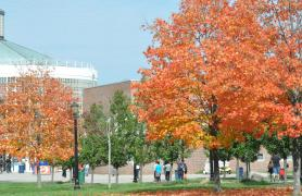 Trees on campus with multicolored leaves in the fall